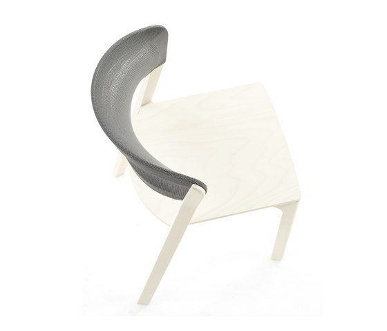 Cafe chair white by Arco | Multipurpose chairs