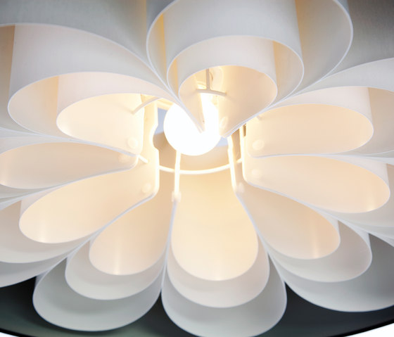 Daisys Suspended lamp by Odesi | General lighting