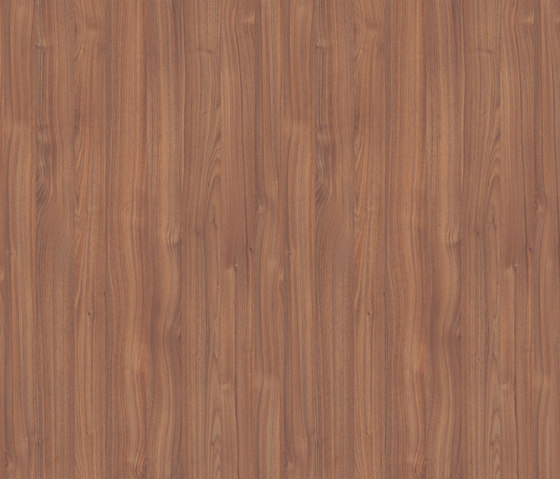 Aragon Walnut by Pfleiderer | Wood panels