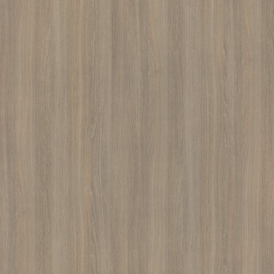 Grey Mountain Oak de Pfleiderer   Planchas de madera