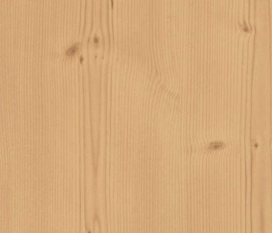 Amber knotted Spruce by Pfleiderer | Wood panels