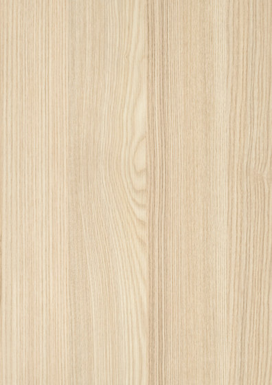Acacia de Pfleiderer | Planchas de madera