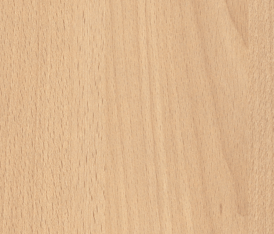 Light Altmuehl Beech by Pfleiderer | Wood panels