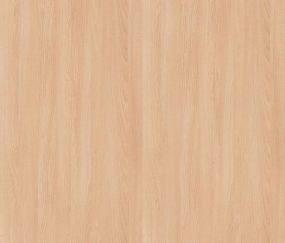 Altmuehl Beech by Pfleiderer | Wood panels