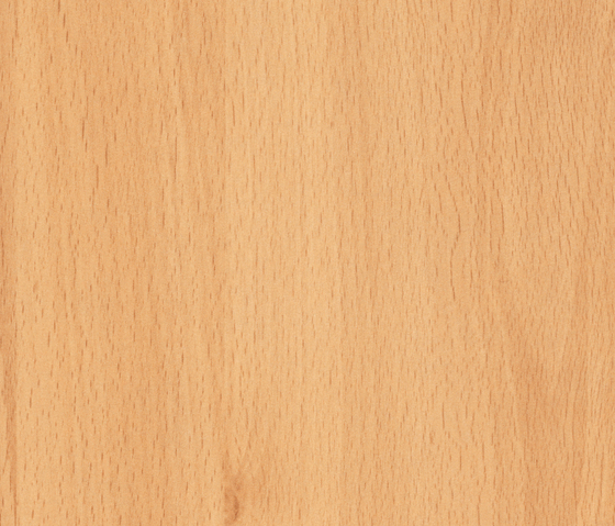 Westphalia Beech by Pfleiderer | Wood panels