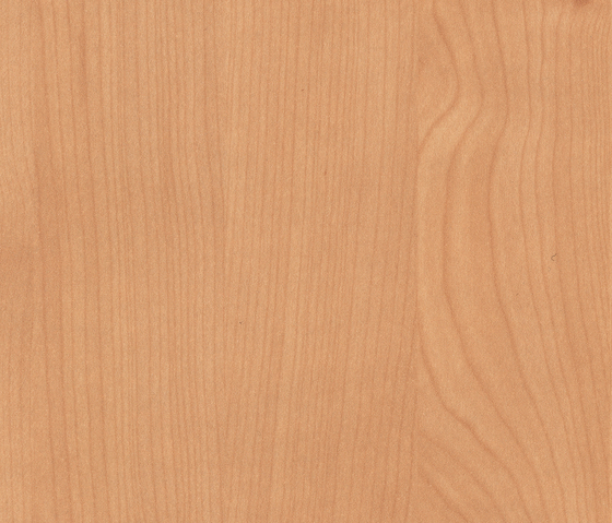 Amber Tessin Maple by Pfleiderer | Wood panels / Wood fibre panels