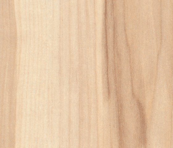 Ontario Maple by Pfleiderer | Panels