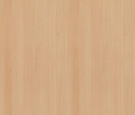 White Beech by Pfleiderer | Wood panels