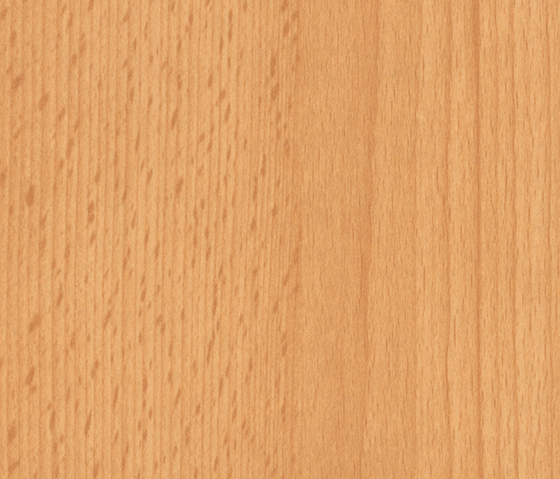 Samerberg Beech by Pfleiderer | Wood panels