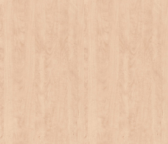 Natural wild Pear by Pfleiderer | Wood panels