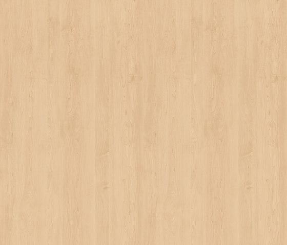 Bergahorn von Pfleiderer | Holz Platten