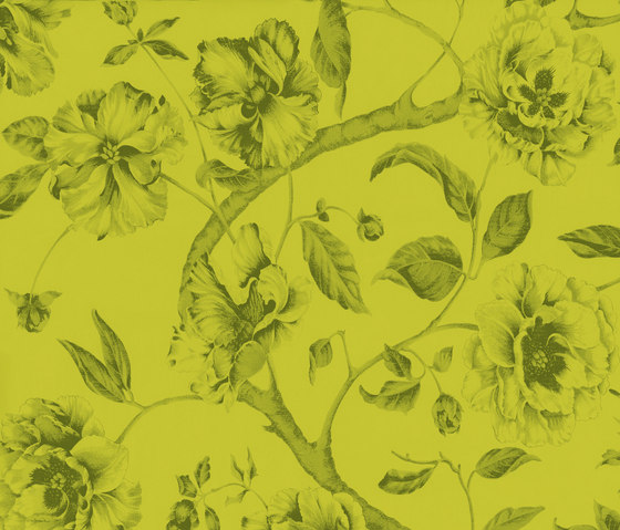 Adagio Pistacho by Equipo DRT | Wall coverings