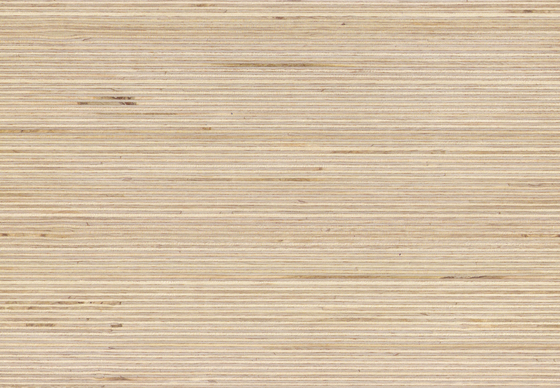 Plexwood - Birch by Plexwood | Wood panels