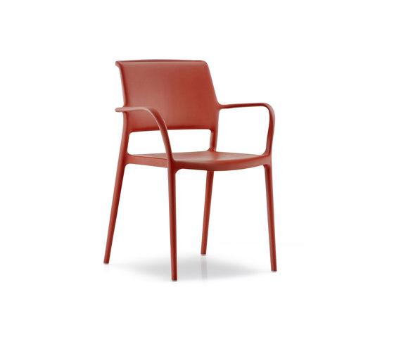 Ara 315 by PEDRALI   Multipurpose chairs