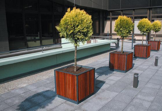 florium | Jardinera de mmcité | Jardineras