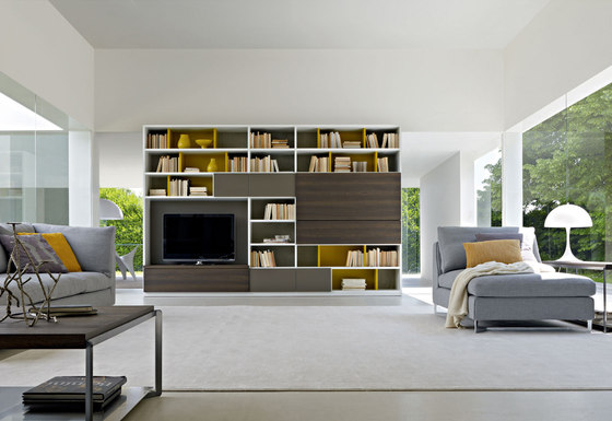 505 2011 edition by Molteni & C | Shelving