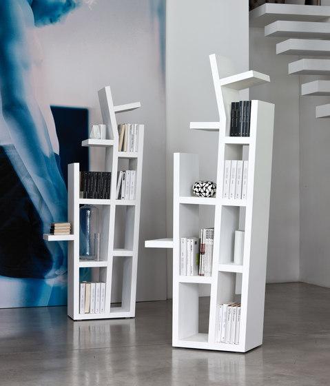 baum by Porada | Shelves