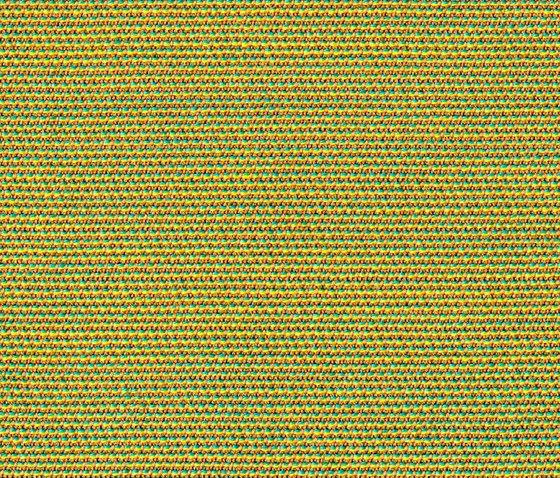 Chameleon Kiwi di rohi | Tessuti