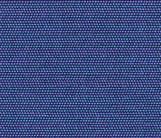Chameleon Blueberry de rohi | Telas