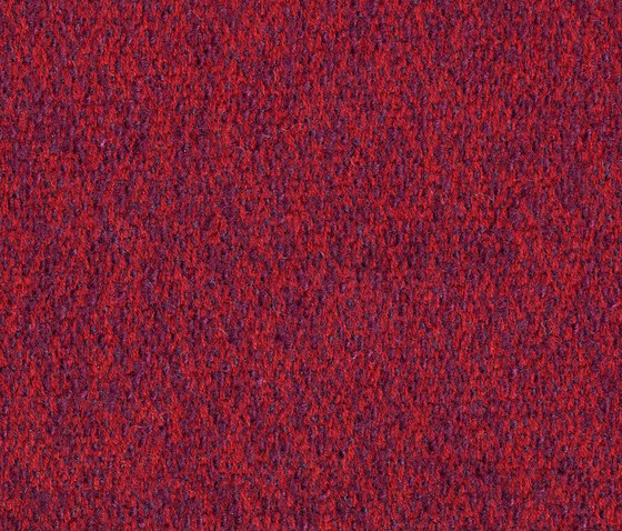 Loft Currant by rohi | Fabrics