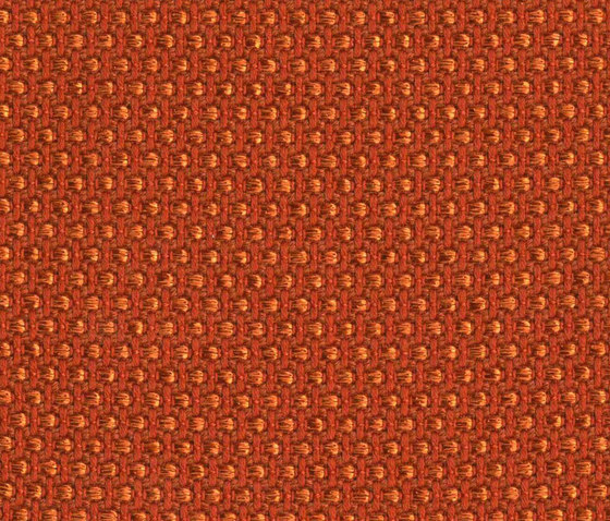 Magia Coral by rohi | Fabrics