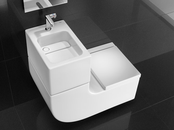 W W By Roca Washbasin Toilet Product
