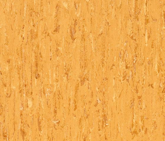 Polyflor Primus 2000 PUR di objectflor | Pavimenti