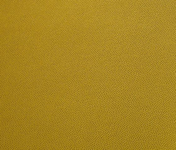 skai Gertago yellow by Hornschuch | Faux leather