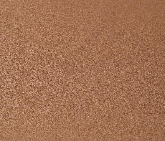 skai Neptun Caleri chestnut by Hornschuch | Outdoor upholstery fabrics