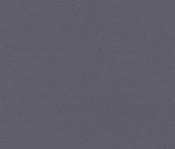 skai Neptun Caleri shark-grey di Hornschuch | Finta pelle