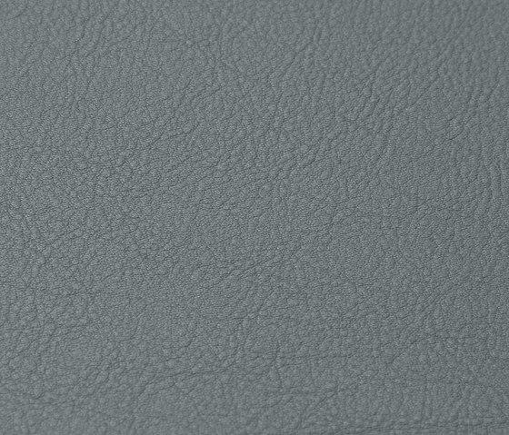 skai Neptun Caleri shark-grey di Hornschuch   Colore monocolore