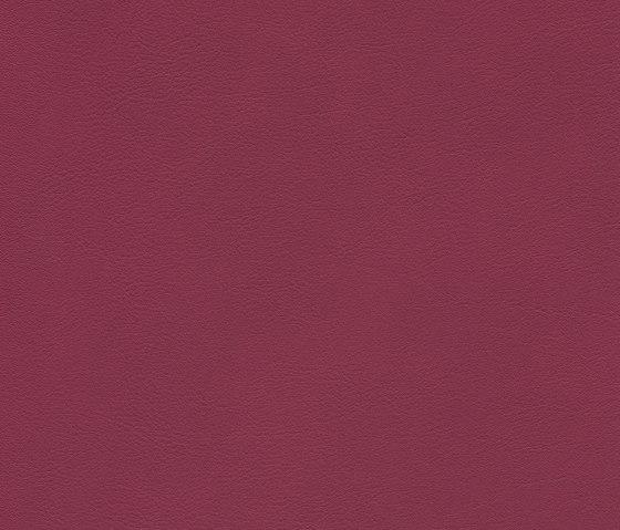 skai Palma NF rubin by Hornschuch | Faux leather