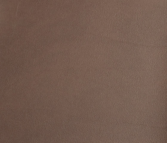 skai Palma NF kenia by Hornschuch   Faux leather