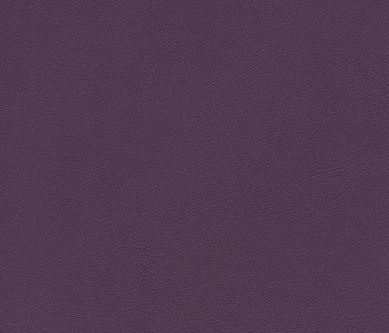 skai Palma NF amethyst by Hornschuch | Faux leather