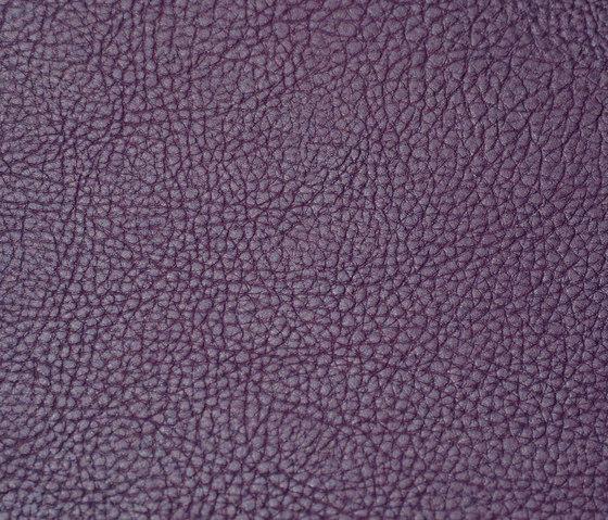 skai Parotega NF amethyst by Hornschuch | Faux leather