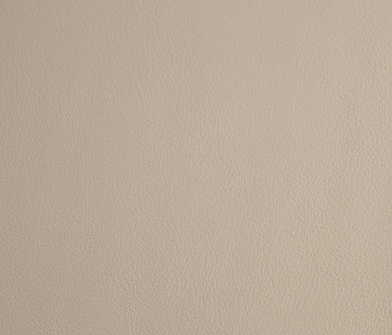 skai Laif lightgrey by Hornschuch | Faux leather