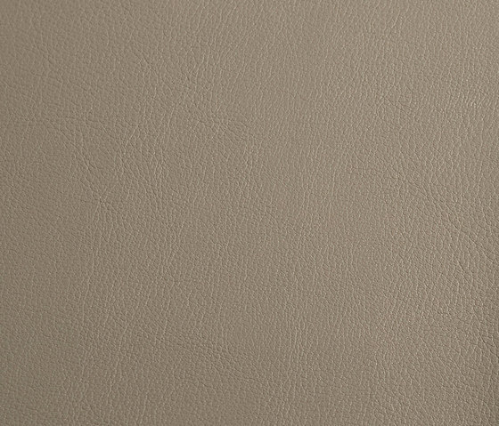 skai Laif pebble by Hornschuch | Faux leather