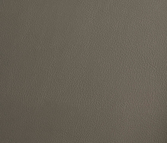 skai Laif dove by Hornschuch | Faux leather