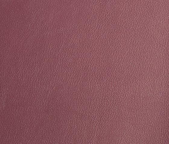 skai Laif amethyst by Hornschuch | Faux leather