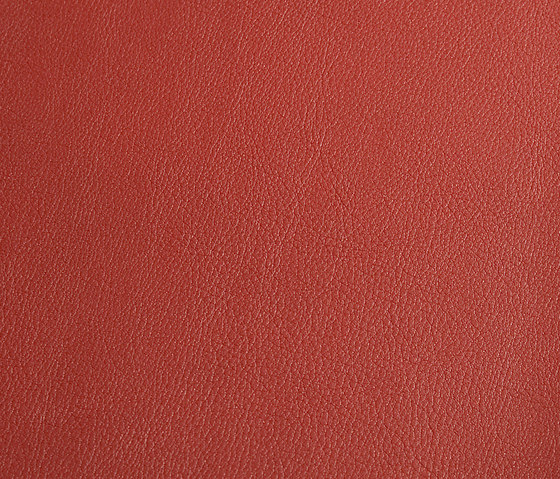 skai Laif cherry by Hornschuch | Faux leather
