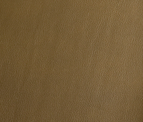 skai Laif olive by Hornschuch | Faux leather