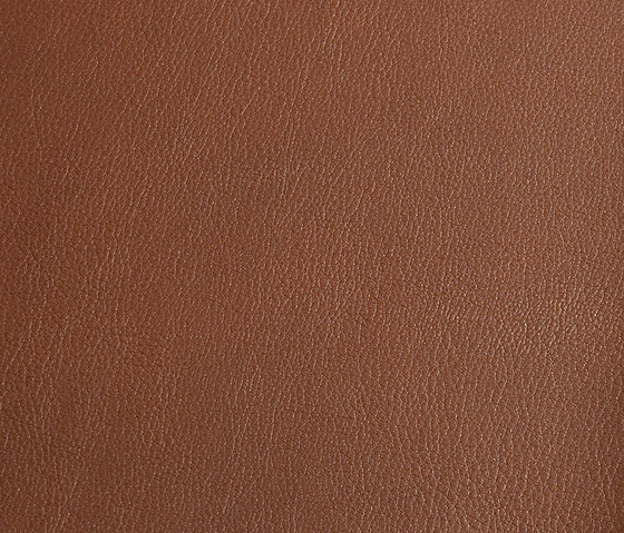 skai Laif nature by Hornschuch | Faux leather