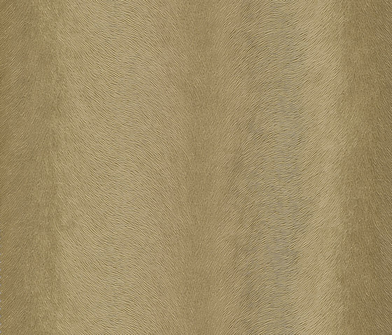 skai Sofelto EN gold by Hornschuch | Faux leather