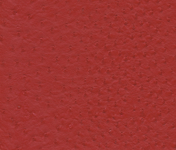 skai Soliena FLS rosso by Hornschuch | Faux leather