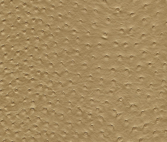 skai Soliena FLS gold by Hornschuch | Faux leather