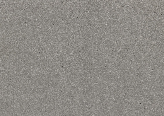 öko skin | FL ferro light silvergrey by Rieder | Concrete panels