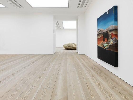 Douglas de DINESEN | Sols en bois