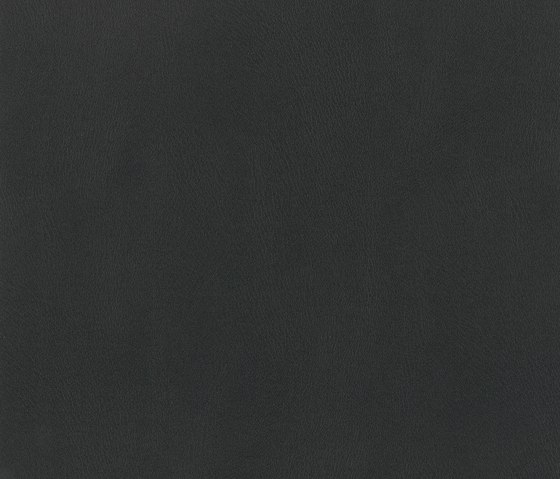 Comete Noir by COTTING Group | Fabrics