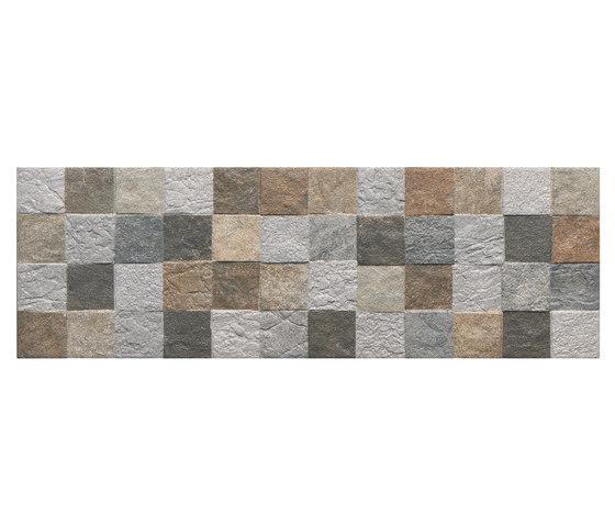 Fosil terek de Oset | Baldosas