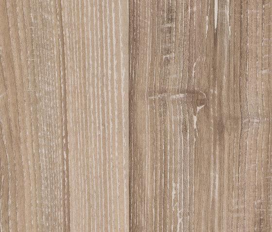 37271 Pero chiaro Tavola intera di Kaindl | Pavimenti laminati